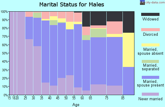 Zip code 31082 marital status for males