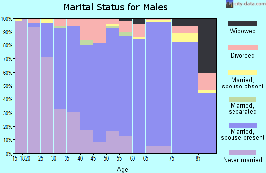 Zip code 31210 marital status for males