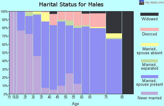 Zip code 31620 marital status for males