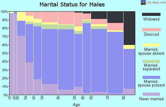Zip code 31728 marital status for males
