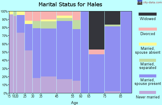 Zip code 31746 marital status for males
