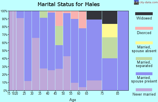 Zip code 31765 marital status for males