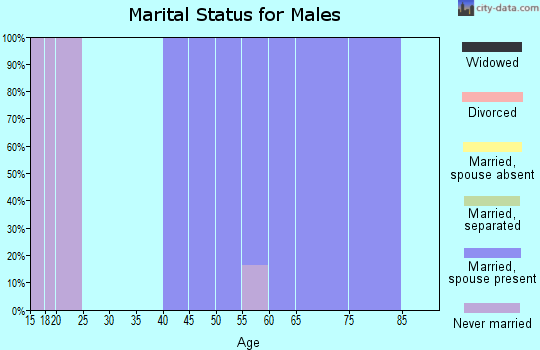 Zip code 31798 marital status for males