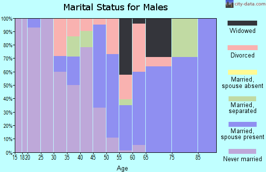 Zip code 31827 marital status for males