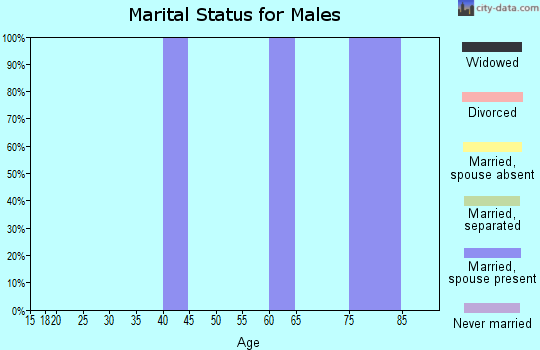 Zip code 32072 marital status for males
