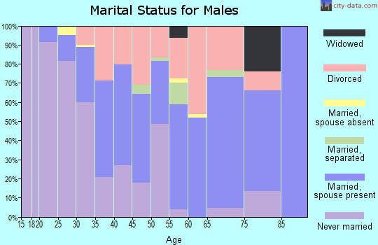 Zip code 32096 marital status for males