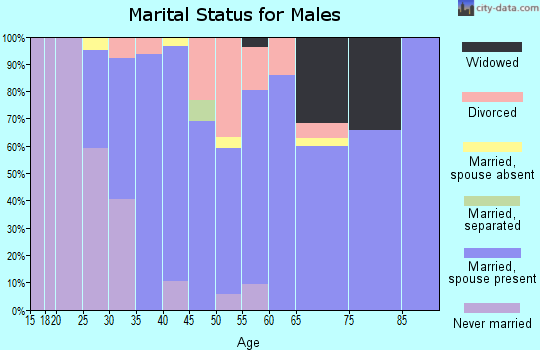 Zip code 32222 marital status for males