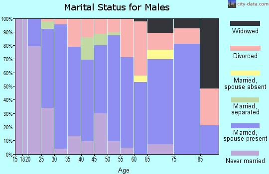Zip code 32234 marital status for males