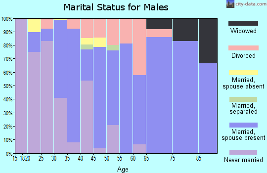 Zip code 32266 marital status for males