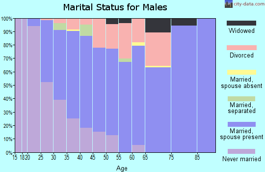 Zip code 32311 marital status for males
