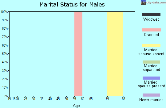 Zip code 32639 marital status for males