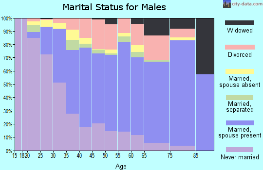 Zip code 32703 marital status for males