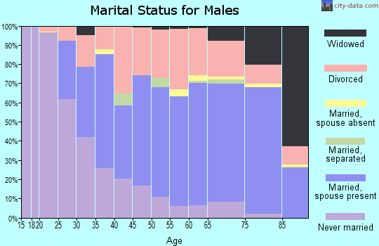 Zip code 32953 marital status for males