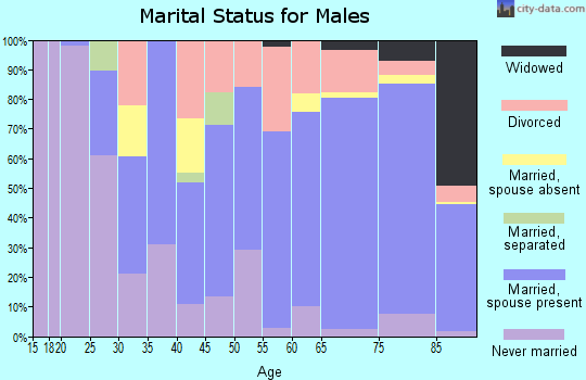 Zip code 32966 marital status for males