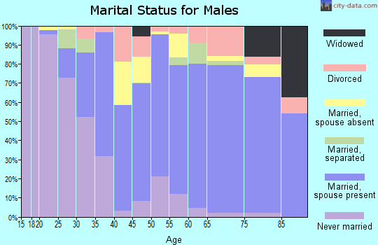 Zip code 32967 marital status for males
