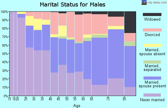 Zip code 33040 marital status for males