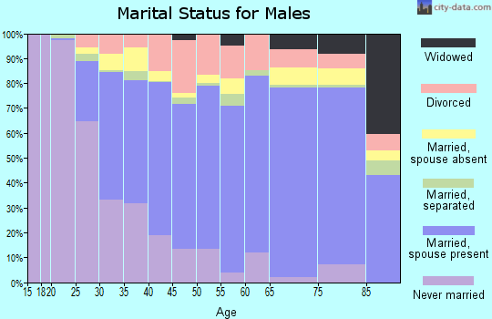 Zip code 33065 marital status for males
