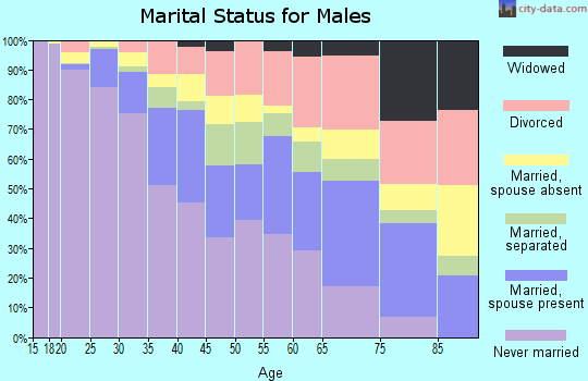 Zip code 33142 marital status for males