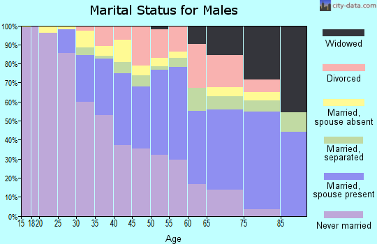 Zip code 33147 marital status for males