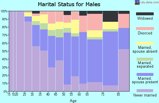 Zip code 33168 marital status for males