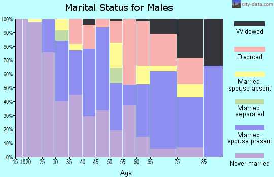 Zip code 33170 marital status for males