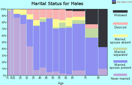 Zip code 33193 marital status for males