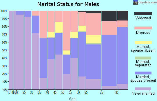 Zip code 33316 marital status for males