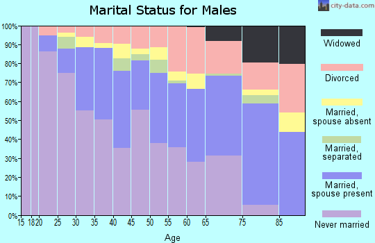 Zip code 33334 marital status for males