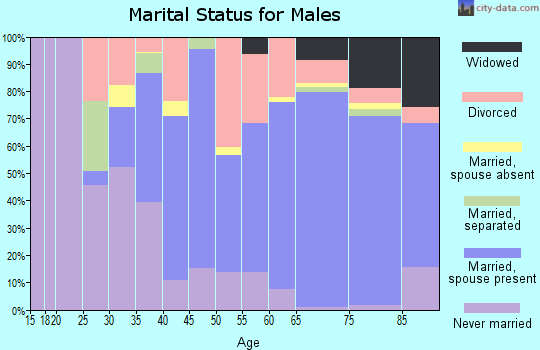 Zip code 33469 marital status for males