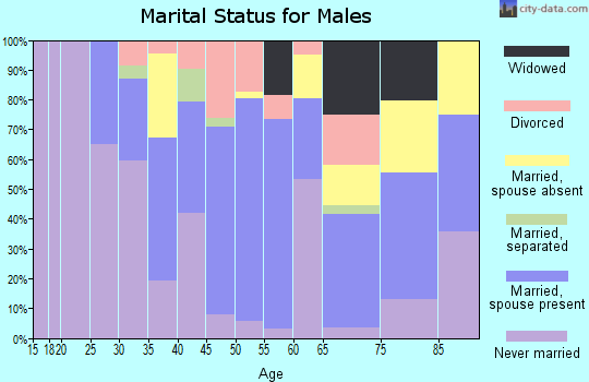 Zip code 33476 marital status for males