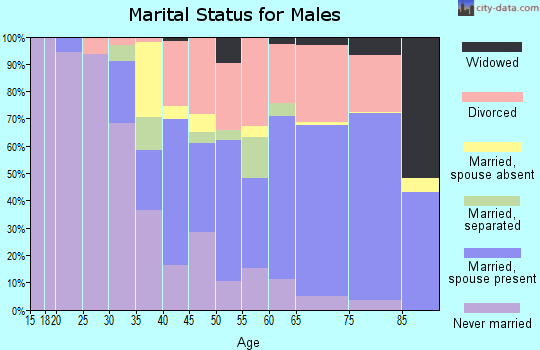 Zip code 33483 marital status for males