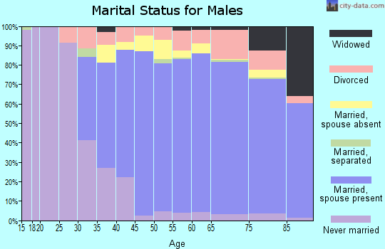 Zip code 33496 marital status for males