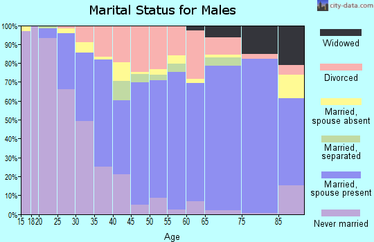 Zip code 33525 marital status for males