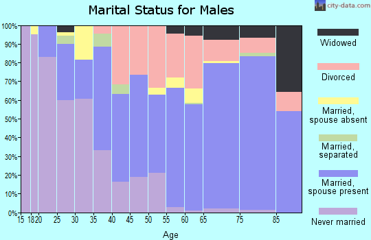 Zip code 33541 marital status for males