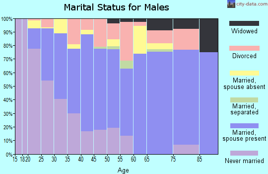 Zip code 33567 marital status for males