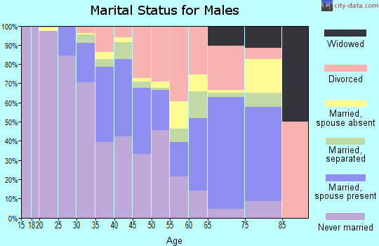 Zip code 33602 marital status for males