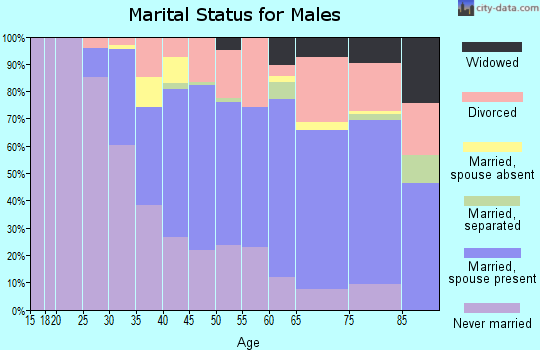Zip code 33606 marital status for males
