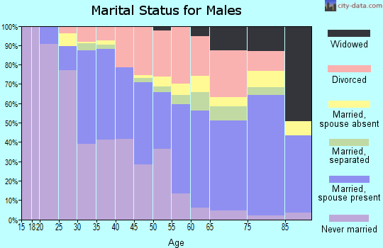 Zip code 33610 marital status for males