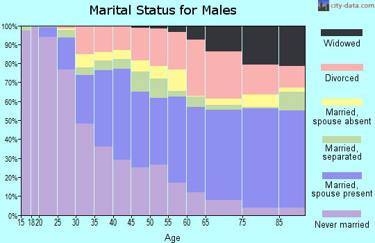 Zip code 33612 marital status for males