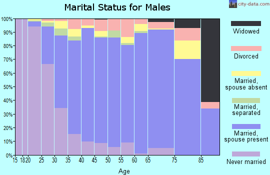 Zip code 33647 marital status for males