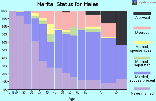 Zip code 33702 marital status for males