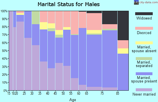 Zip code 33706 marital status for males