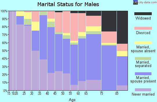 Zip code 33756 marital status for males