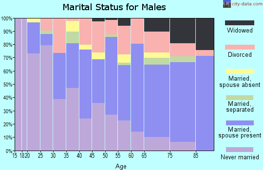 Zip code 33815 marital status for males