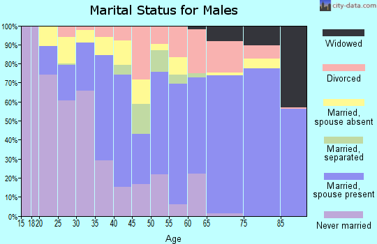 Zip code 33852 marital status for males