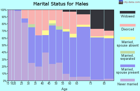 Zip code 33903 marital status for males