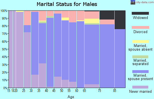 Zip code 33913 marital status for males