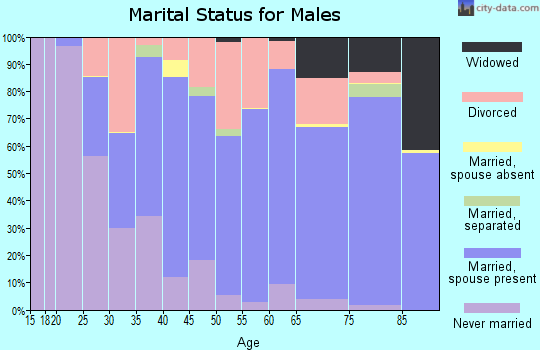 Zip code 33948 marital status for males