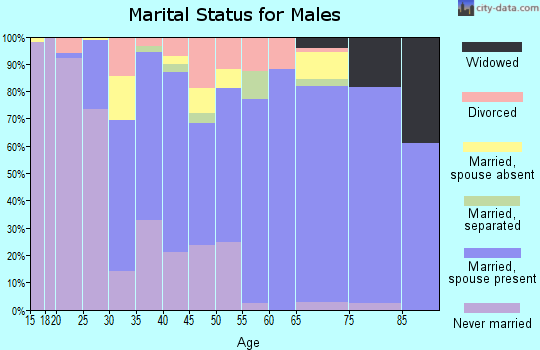 Zip code 33972 marital status for males