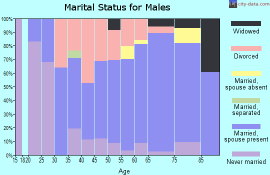 Zip code 34607 marital status for males